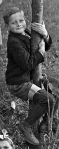 26bbbb - 1951 Fränkisches